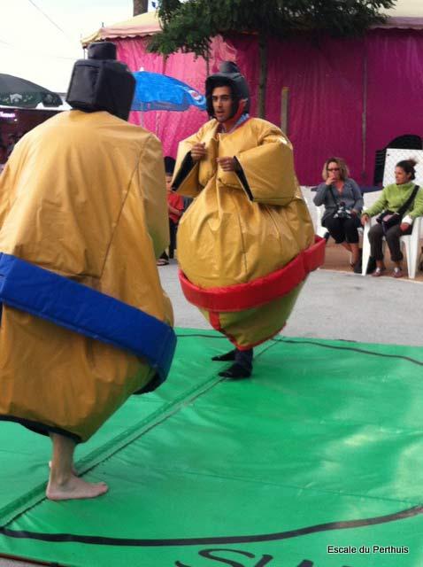 bataille de sumo