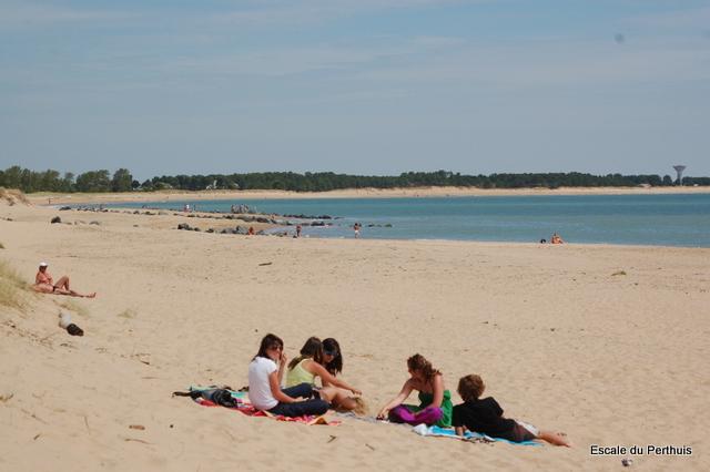 plage de la tranche sur mer