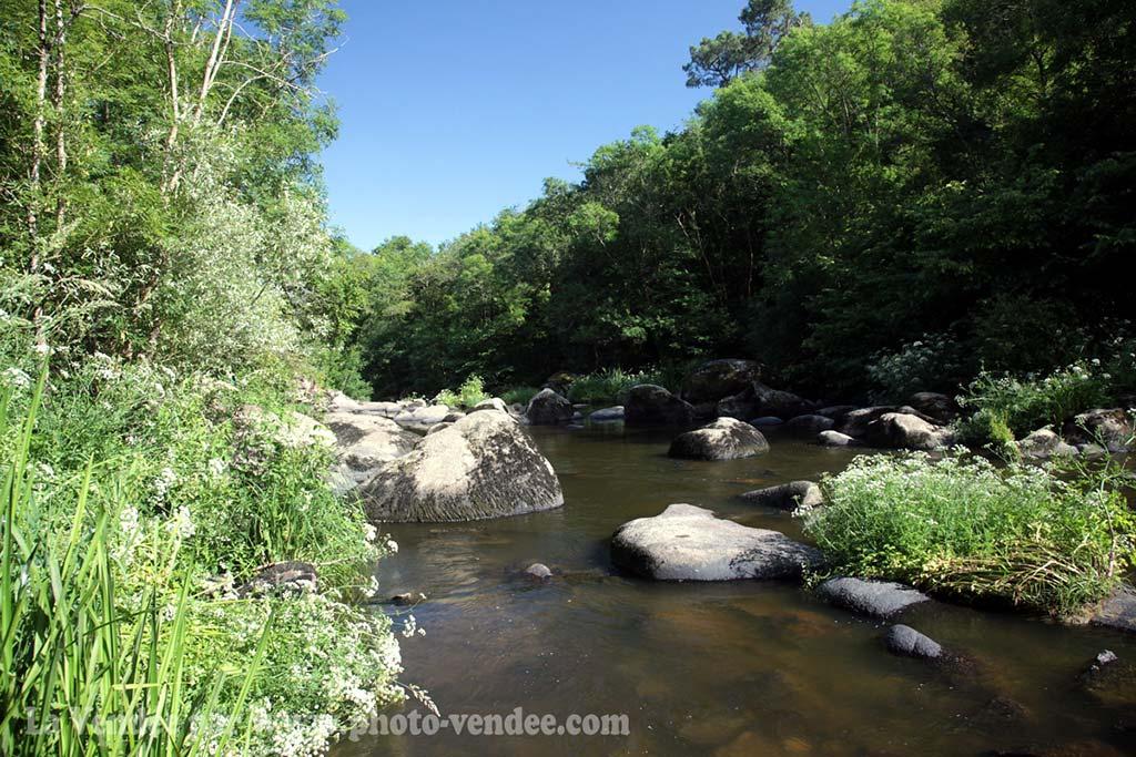 la vallée de l'Yon au départ du camping